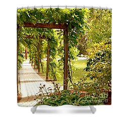Tranquility Shower Curtain by Becky Lupe