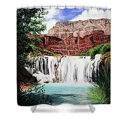 Tranquility In The Canyon Shower Curtain