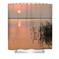 Shower Curtain featuring the photograph Tranquility by Inge Riis McDonald