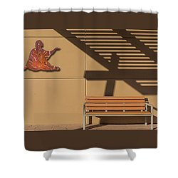 Shower Curtain featuring the photograph Transcendental by Paul Wear