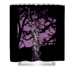 Transference Shower Curtain by Danielle R T Haney