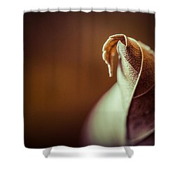 Shower Curtain featuring the photograph Transformation by Yvette Van Teeffelen