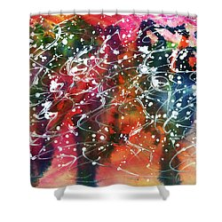 Transgression  Shower Curtain