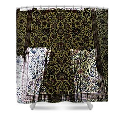 Transience  Shower Curtain