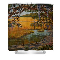 Transition  Shower Curtain by Dorothy Allston Rogers