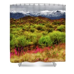 Transition Shower Curtain by Rick Furmanek