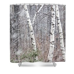 Transition, Spring Squall 3 - Shower Curtain