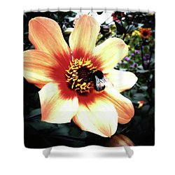 Translucent Wings Shower Curtain