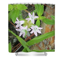 Transparent Flowers Shower Curtain