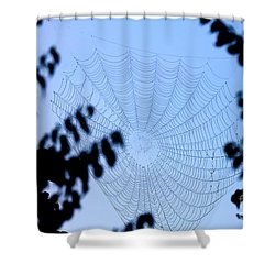 Transparent Web Shower Curtain