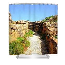 Trapani Sunny Road Shower Curtain