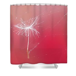 Trapped In Vain Shower Curtain by Kharisma Sommers