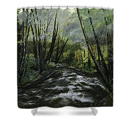 Trask River Shower Curtain