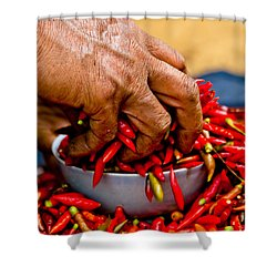 Woman Holding Red Chillies, Can Cau Market, Sapa,vietnam Shower Curtain