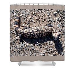 Traveler The Gila Monster Shower Curtain