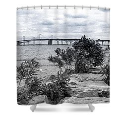 Shower Curtain featuring the photograph Traversing The Chesapeake by T Brian Jones