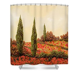 Tre Case Tra I Papaveri Shower Curtain