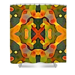 Treasure Shower Curtain by Amy Vangsgard