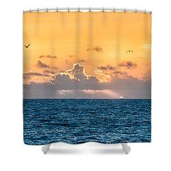 Treasure Coast Imaginations Shower Curtain