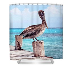 Treasure Coast Pelican Pier Seascape C1 Shower Curtain by Ricardos Creations