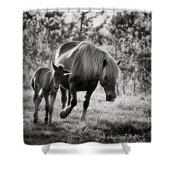 Treasured Moment Shower Curtain