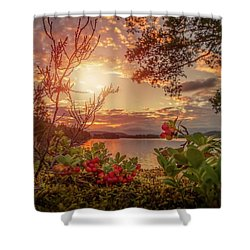 Treasures In Nature Shower Curtain