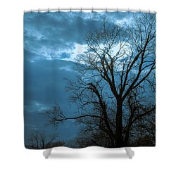 Tree # 23 Shower Curtain
