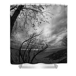 Tree 1 Shower Curtain by Simone Ochrym