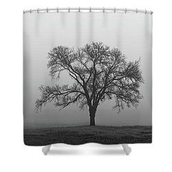 Tree Alone In The Fog Shower Curtain
