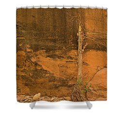 Tree And Sandstone Shower Curtain