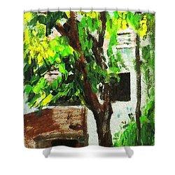 Tree And Shade Shower Curtain by Usha Shantharam