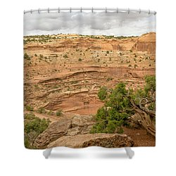 Tree And Shafer Trail Shower Curtain