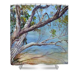 Tree At Islamorada Key Shower Curtain