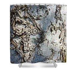 Tree At Pitt Street Pier Shower Curtain