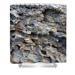 Shower Curtain featuring the photograph Tree Bark 1 by Jean Bernard Roussilhe