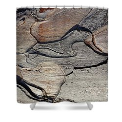 Shower Curtain featuring the photograph Tree Bark 2 by Jean Bernard Roussilhe