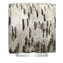 Shower Curtain featuring the photograph Tree Bark Abstract by Christina Rollo