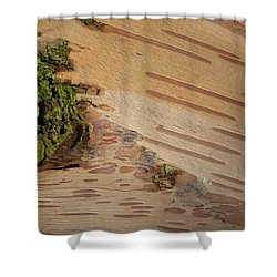 Tree Bark With Lichen Shower Curtain