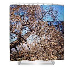 Tree Bow And Dance Shower Curtain