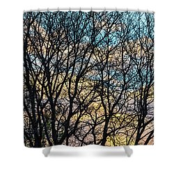 Shower Curtain featuring the photograph Tree Branches And Colorful Clouds by James BO Insogna