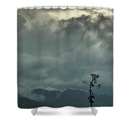 Tree. Bright Light Shower Curtain