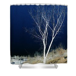 Tree By Stream Shower Curtain by Stuart Turnbull