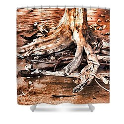 Tree By The Ocean 1 Shower Curtain