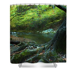 Tree By Water Shower Curtain by Lena Auxier