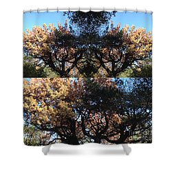 Tree Chandelier Shower Curtain