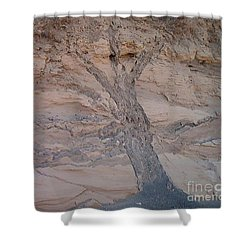 Shower Curtain featuring the photograph Tree by Charles Robinson