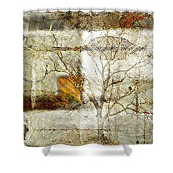 Tree Deconstructed 1 Shower Curtain by Lynda Payton
