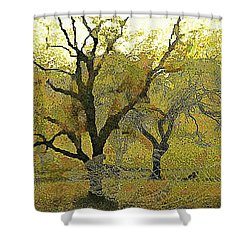 Tree Deconstructed 4 Shower Curtain by Lynda Payton