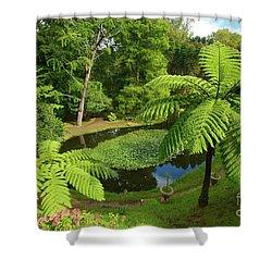 Tree Ferns Shower Curtain by Gaspar Avila
