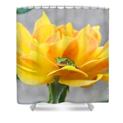 Tree Frog Series 1 Shower Curtain
